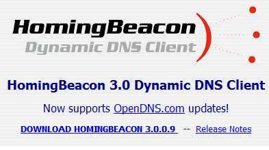 DNS Client Homingbeacon